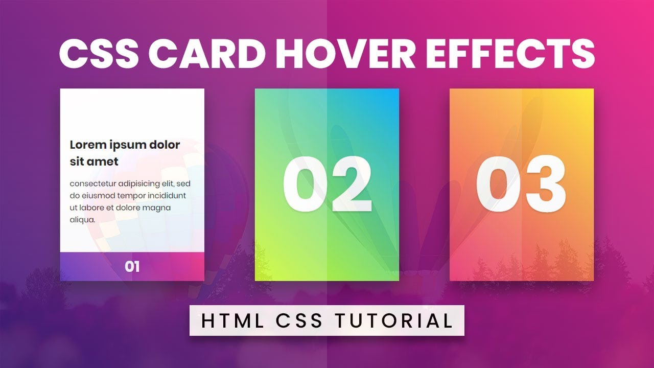 CSS Card Hover Effects | Html CSS
