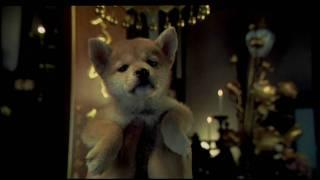 HACHIKO - Trailer Español HD