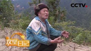 《攻坚日记》四方石村的变迁(二) 20200316 | CCTV农业