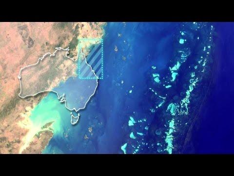 afpbr: A Grande Barreira de Corais