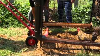 OA AKO Telemag #2 Chicken Tractor