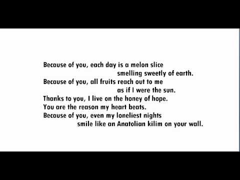 """""""Because of You,"""" by Nazim Hikmet"""