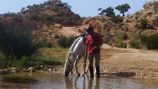 HD : Amazir Cheval : rando de 5 jours à cheval au Maroc (Essaouira) en bivouac et chez l'habitant