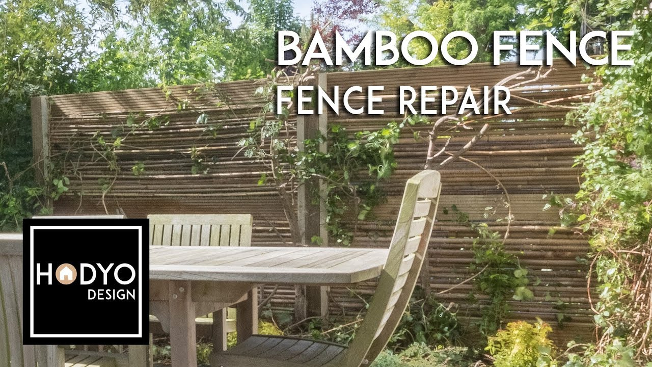 Diy Bamboo Fence Fencing Repair Youtube