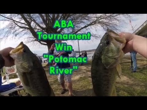 17.7 Lbs Tournament Win | ABA Potomac River