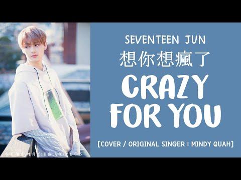 [LYRICS/가사] SEVENTEEN (세븐틴) JUN - 想你想瘋了 (Crazy For You) [COVER]