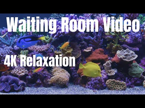 RELAXING  - Sleep Aid - Fall Asleep Fast - Calming Sounds