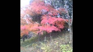 麻生詩織 - 紅葉前線
