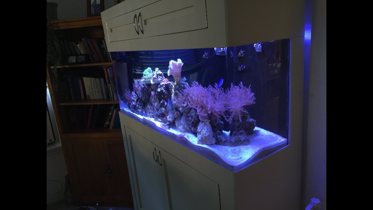 55 gallon acrylic fish tank youtube for Acrylic vs glass fish tank