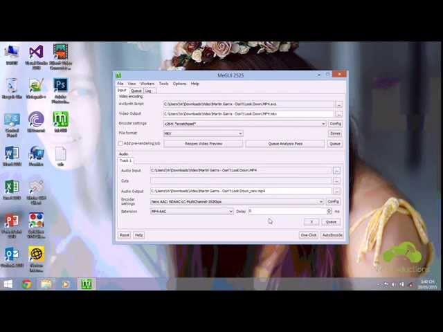 How to add subtitle with MeGUI Download video - get video