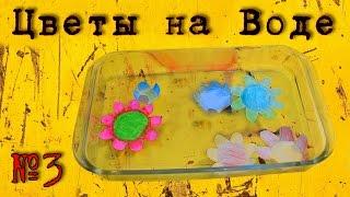 Раскрывающиеся Цветы на Воде из Бумаги #3(Подписаться - http://bit.ly/ManzaProject В этом видео вы увидите как сделать раскрывающиеся цветы на воде. Этот эксперим..., 2016-04-04T10:16:10.000Z)