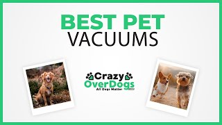 Best Pet Vacuums |  2020 Buying Guide