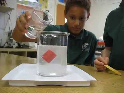 4th Graders Experiment with Density at Pacific Boychoir Academy