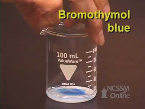 experiment of reaction nahco3 hcl Chemicals well no observations of the reaction a nahco3 + hcl  general college chemistry purpose this experiment examines the reactions of common chemical s .