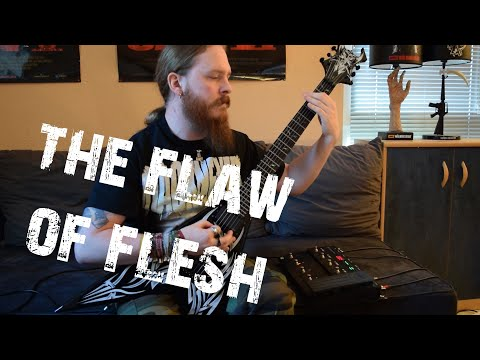 Hackneyed - The Flaw Of Flesh (FULL HD Guitar Cover)