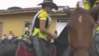 Horse trys to have sex with girl