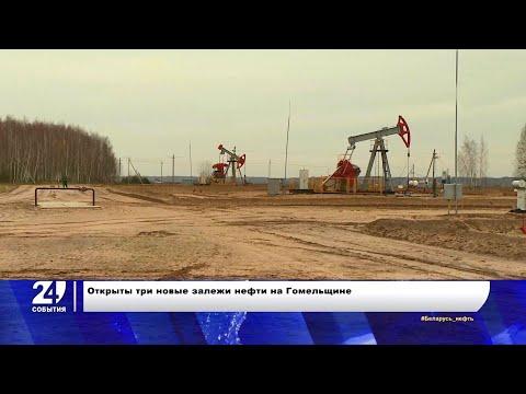 Новые залежи нефти открыли в Беларуси
