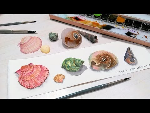 How To Paint 5 Seashells in Watercolor Layer by Layer