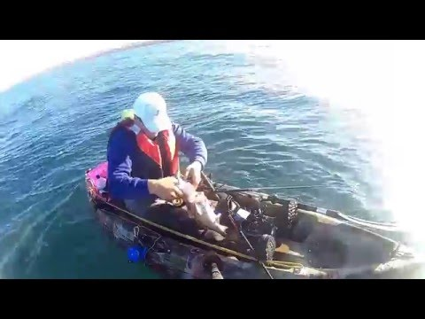 Weymouth Kayak Fishing