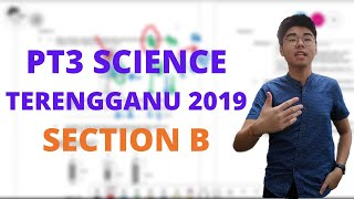 HOW DOES A COCONUT FALL? [SEC B] | TERENGGANU PT3 TRIAL 2019 SCIENCE