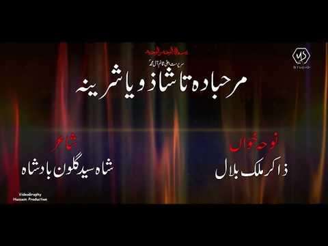 PASHTO NOHAY 2019-20 | Marhaba Da Ta Sha Zoya Shirina | ZAKIR MALIK BILAL Pashto Matam