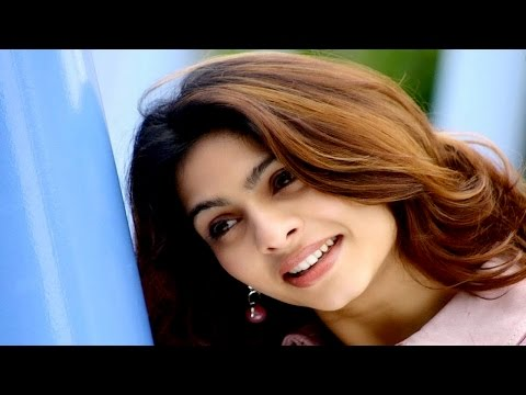 Tanisha Mukherjee - Latest 2017 Bollywood Comedy Film ᴴᴰ - Be Carefull