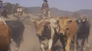 2018 Reno Rodeo Cattle Drive