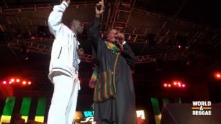 Mutabaruka & Ninja Man Live @ Rebel Salute 2013 - Jamaica
