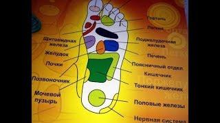 Медицина (Стопы ног. Точки органов. Массаж этих точек)
