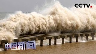 [中国新闻] 八月十八潮 壮观天下无 | CCTV中文国际