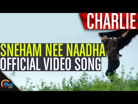Charlie | Sneham Nee Naadha Song Video | Dulquer Salmaan, Aparna Gopinath, Parvathy | Official