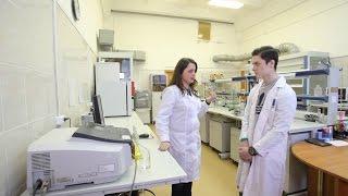 Профпогружение №3: лаборант химического анализа