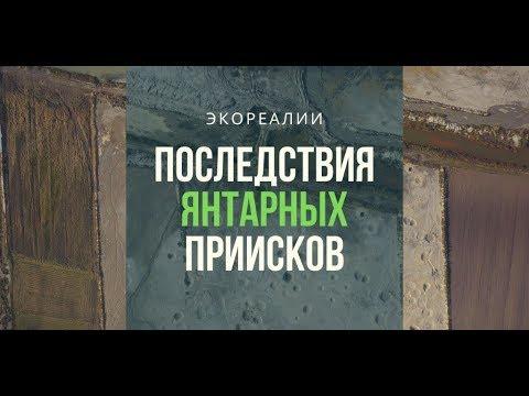 Что добыча янтаря сделала с украинским Полесьем   ЭкоРубрика