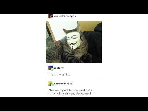 Tumblr Posts - Episode 35
