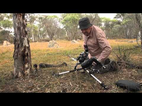 Photographing Orchids - York, Western Australia