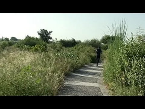 Citizens' Voice: How Gurgaon residents turned a mining site into a bio-diversity park?