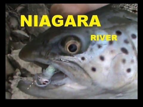 Bill & Mike -vs- The Mighty NIAGARA
