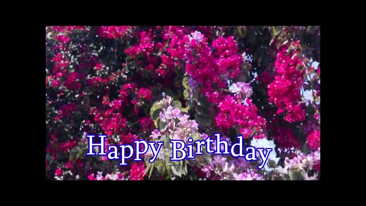 Happy birthday with orchids and flowers youtube happy birthday with orchids and flowers dhlflorist Gallery