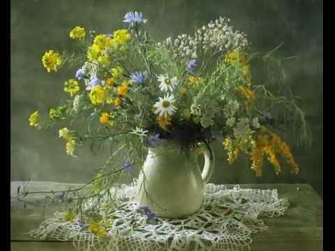 Цветы полевые натюрморт фото