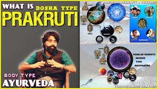 introduction to ayurveda prakriti