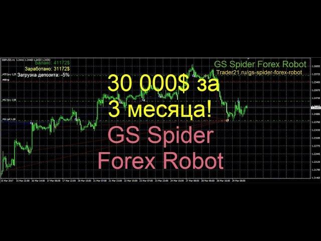 Паук форекс фору forex canl dviz