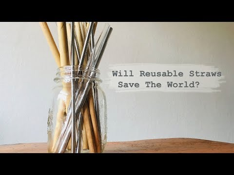 MY PROBLEM WITH SOCIAL MEDIA ACTIVISM // What's Wrong With Reusable Straws