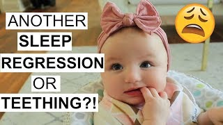 DAY IN THE LIFE OF A SAHM   Another Sleep Regression?!   Tara Henderson