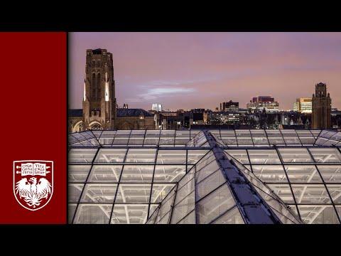 UChicago Architecture: Steve Wiesenthal on the Campus