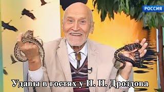 """Арслан Валеев на передаче """"В мире животных"""""""