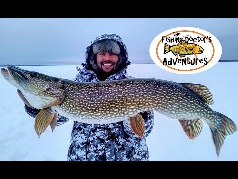 Monster Trophy Alberta Northern Pike