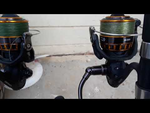 Daiwa BG 4000/5000 Review How Maintained (1)
