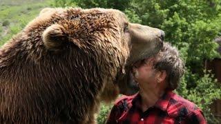 Невероятные животные #6