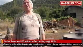 Andız Pekmezi Köylülerin Geçim Kaynağı Oldu