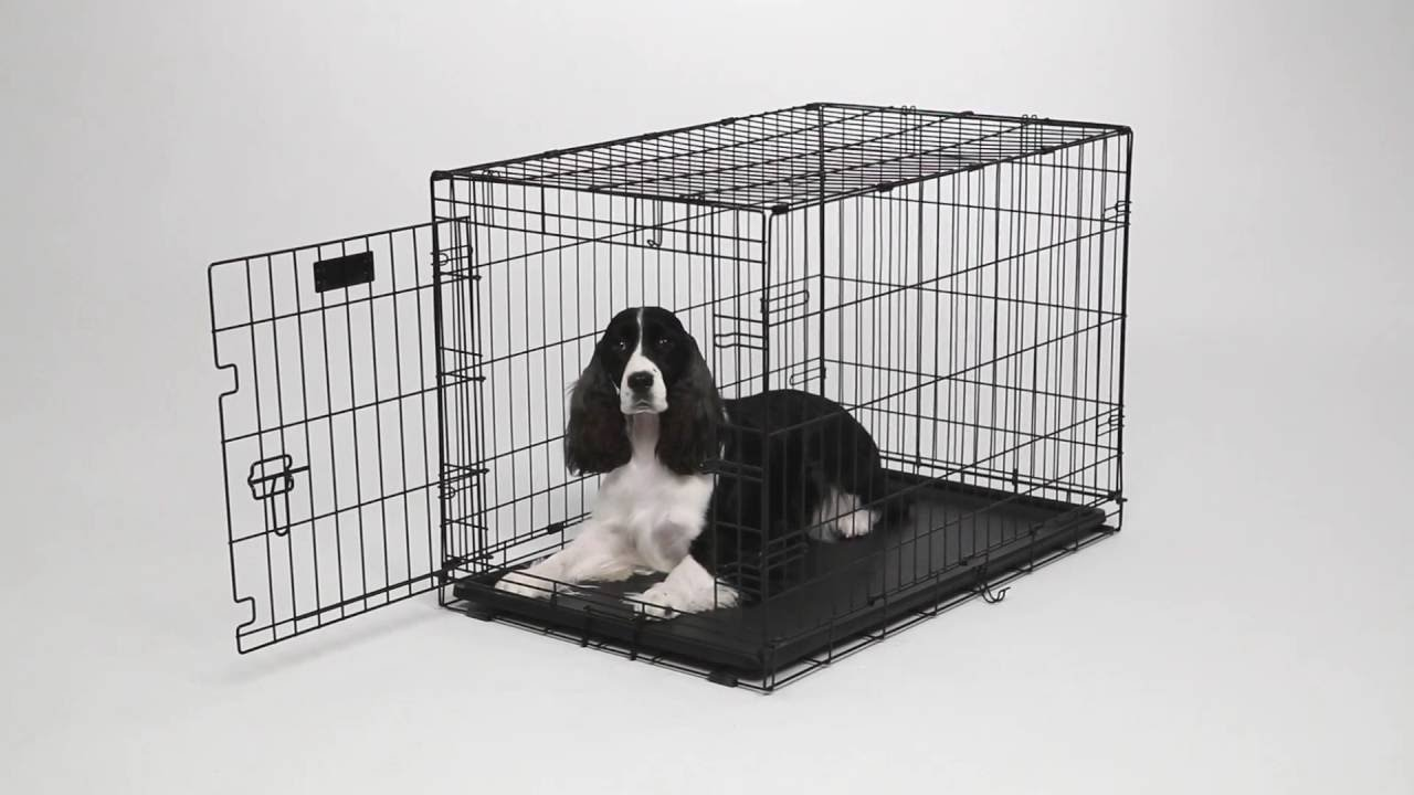 contour dog crates by midwest homes for pets
